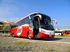 Buses JM (Pablo Duarte Gutirrez) Tags: marcopolo paradiso mercedes via valparaso sanfelipe transporte interurbano vehculo