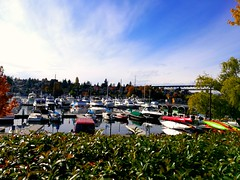 Honor 8 shot (changizbaluch) Tags: seattlestree awesome water boat ship cruise honor huawei