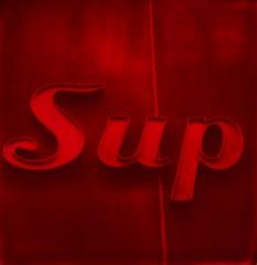 Sup (anniebee) Tags: polaroidweek roidweek autumnpolaroidweek polaroidweek2016 polaroid impossibleprojectfilm polaroid680camera nyc sign blackandredduochromefilm dayone|photoone instantfilm
