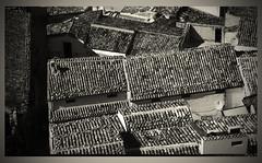 cotto (Camillo diBì ()) Tags: tetti coppi scicli sicilia italia settembre biancoenero viraggio