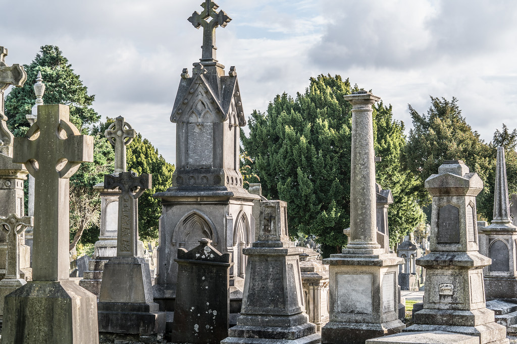 A QUICK VISIT TO GLASNEVIN CEMETERY[SONY F2.8 70-200 GM LENS]-122110