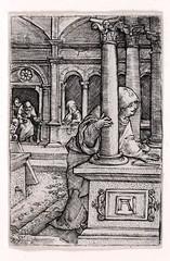 The Virgin Seeking Jesus in the Temple.jpg (lluisribesmateu1969) Tags: 16thcentury altdorfer dallasmuseumofart dallas virgin