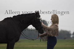 15 oktober 2016-79 (MZorro4) Tags: mariekehaverfotografie oudesluis schagen paardenfotografie portretfotos rijden wwwmariekehaverfotografienlpaarden