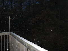 October Snow (DianesDigitals) Tags: dianesdigitals weather snow