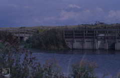 Back of sea wall, Cors Crychydd reen, Lamby, 1999 (Mary Gillham Archive Project) Tags: 1999 lamby landscape st232777 wales water 8336 cardiff