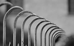 iron fence (GOLDFOCUS) Tags: goldfocus germany great giant golddragon fence zaun availablelight aufgabe autofocus hff black blackandwhite bw schwarzweiss schrfentiefe schwarzweis schatten shadow thebeautyofbokeh bokeh dof speyer pfalz geringeschrfentiefe detail digital deutschland dark dunkel distortion eos ef eos60d entsttigt einsam canoneos60d cool canon fantastic farben farbe f18 death makro mono monochrome noiretblanc nophotoshop