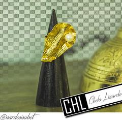 Chela Arte Ps 34 copy (ChelaLizardo) Tags: chela lizardo khyrilaly khyra maracay dominguez dinamita creativa chl talento venezolano parque aragua diseo hecho en venezuela