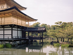 Kinkaku-ji (soho42) Tags: japan kinkakuji goldentemple kyoto analog mamiya645protl kodakportapro160