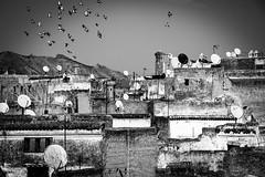 I tetti della Medina (merlo.betty) Tags: fes marocco medina