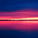 Pink Sky  - Ciel rose