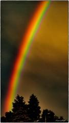 Rainbow border (yvesgalland) Tags: arcenciel tarn 81