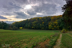Herbstlich (general811) Tags: herbst wald uckermark landschaft 2016