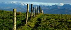 fence and picos __ valla y picos (Roger S 09) Tags: asturias sariego picos picosdeeuropa valla fence siero
