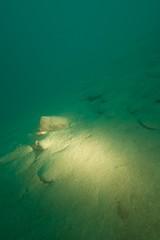 Renzos neue Lampe zuntet guet (habi) Tags: diving hausriff renzo thunersee