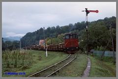 Ukraine 93_117aa (r_walther) Tags: güterzug holztransport schmalspur lok1630 theresiental tu7 waldbahn zakarpattia ukraine ukr