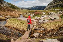 Kjerag (Karol Majewski) Tags: girl norway clouds fjord scandinavia landsacape rogaland lysefjord kjerag dziewczyna chmury ryfylke kobieta krajobraz norwegia skandynawia