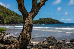 Road To Hana, Maui - 93 (www.bazpics.com) Tags: ocean from road landscape island hawaii islands town us scenery honeymoon village unitedstates pacific maui hana hi hna