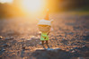 Elizabeth (MMortAH) Tags: york uk autumn sunset macro fall toy toys nikon elizabeth dusk designer micro brandt 28 40mm kathie nikkor peters olivas wandering vinyls goldenhour misfits d90 circusposterus