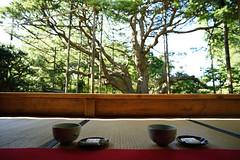 20151016 Kyoto Ohara 4 (BONGURI) Tags: nikon df kyoto cosina jp   ohara   japanesetea    hosenin   sakyo sakyoward voigtlndercolorskopar20mmf35sl2naspherical oharaarea  japanesepowdertea