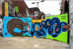 Street Art London (Mabacam) Tags: streetart london wall graffiti mural snake environmental wallart urbanart shoreditch freehand publicart endangered aerosolart spraycanart eastend pangolin endangeredspecies mutiny 2015 urbanwall lovewildlife indianpangolin frankiestrand nomadiccommunitygardens