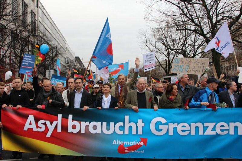 AfD-Demo Berlin 12