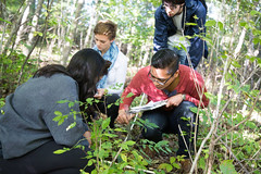 Field work (SUNY Geneseo) Tags: fall students field work out outside student hands woods classroom working class research fields geology biology joint kw classes 2015 fall2015 decresearch