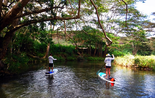 2015 Kauai Paddle Adventure  (140)