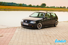 "MK4 & Polo 6N2 • <a style=""font-size:0.8em;"" href=""http://www.flickr.com/photos/54523206@N03/22705464283/"" target=""_blank"">View on Flickr</a>"