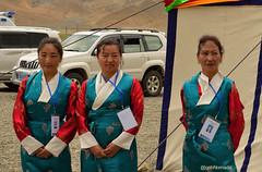 Helpers (bNomadic) Tags: china road travel nepal yak mountain lake landscape photography la blog highway friendship batch buddhist delhi traditional explorer chinese peak buddhism tibet holy tibetan kathmandu nepalese tradition chu lhasa kailash trade everest yatra mea sanctuary himalayas tra sikkim shigatse himalayan overland gyantse mansarovar younghusband chode gangtok xie sakya kumbum sikkimese tsang lazi rawat kmy lhatse bhutia tsangpo tashilhunpo nathula nyang transhimalayas pelkhor tsechen chumbi jelepla lagpa bnomadic kangma kangmar