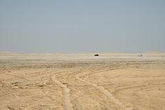 qatar deserto (7) (Parto Domani) Tags: trekking desert arabic east ash desierto oriente middle peninsula medio wste qatar deserto arabica dsert penisola   escursione  shaqra wste dsert