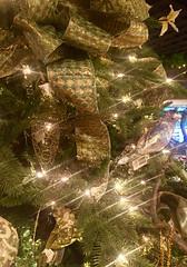 "What Christmas Means to Me (EDWW (day_dae) Esteemedhelga) Tags: merrifieldgardencenter holiday christmas ornaments holidaydecornativity cheer holidayseason happyholidays seasongreetings merrychristmas stockings christmastrees wreath snowflakes santa santaclaus st nicholas snow globe snowman reindeer jolly angels ""northpole"" ""sleighride"" holly ""christchild"" bells ""artificialtree"" carolers caroling ""candycane"" ""gingerbread"" garland elf elves evergreen ""feliznavidad""frostythesnowman"" ""giftgiving"" goodwill icicle ""jesus"" ""joyeuxnoel"" kriskringle"" manger mistletoe nutcracker partridge poinsettia rejoice scrooge ""sleighbells"" ""stockingstuffer"" tinsel ""wisemen"" ""wrappingpaper"" yule yuletide festive bethlehem ""hohoho"" illuminations ""twelvedaysofchristmas"" ""winterwonderland"" xmas bauble esteemedhelga edww daydae merrifield gardening center"