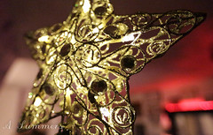 It's that time of year again.... (amysummers) Tags: christmas red tree glitter canon happy photography gold lights star photo holidays photographer dof amy mark photograph 5d summers ||| 1635mm