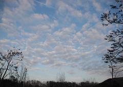 Avondlucht (~~Nelly~~) Tags: sky ciel lucht mechelen