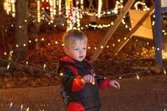 Brock at Roper Mountain Holiday Lights (jackie.moonlight) Tags: mountain holiday sc lights bokeh center science greenville roper 2015