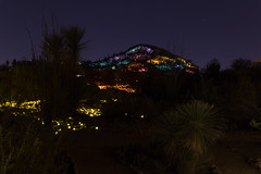 Field of Light by Bruce Munro-0509 (rob-the-org) Tags: iso400 noflash uncropped 250 desertbotanicalgarden f63 18mm phoenixaz 150sec fieldoflight 18250mm brucemunro munroexclusive topjanuary2016