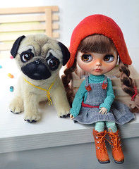 Hello, Red! (Fenekdolls) Tags: pug toy blythe doll felted funny red hat