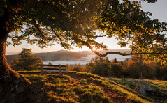 Sunrise (He_Da) Tags: reflectyourworld zug schweiz sun sonne sunrise sonnenaufgang natur nature seaoffog nebelmeer nebel fog switzerland