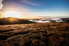 Sunrise and the fog (NikNak Allen) Tags: plymouth devon dartmoor moor moorland grass grasses tree trees valley hill hills tor tors sun light morning sunrise for mist sky cloud landscape view