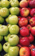 Apples [Nikon F5 Film] (Aviator195) Tags: nikon nikonfilm nikonf5 f5 film filmphotography filmisnotdead filmphotos filmscan 35mm 35mmfilm 50mm apples fruit apple grocery produce food fresh kodak kodakektar100 kodakektar ektar100 ektarfilm ektar red green coles