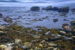 _DSC6663 (Simsekphoto) Tags: stockholm tor outdoor sea water landscape grass nikon d750 sweden cloud photography stones