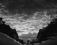 Cloudy Lake (Ren-s) Tags: blackandwhite noiretblanc reunionisland runion dom clouds nuages streets rue upsidedown sky ciel water eau flaque puddle mirror mirroir