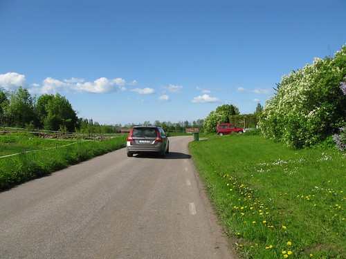 The road between Varnhem and Öglunda 2010(6)