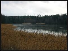 ylisjarvi01 (Kola-apsa) Tags: ylisjrvi muurla salo lake