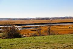 Landscape of Essex, Massachusetts in Autumn (ynaka29) Tags: essex massachusetts usa marsh