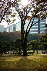 Imperial Palace Outer Gardens (ubic from tokyo) Tags: 85mm cosina ilce7 imperialpalaceoutergardens japan outer planar planart1485 planart1485zf2 sony sonya7 tokyo zf2 carlzeiss