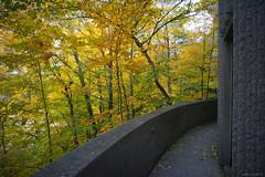 DSC07407 (sesquiotic) Tags: foliage fallfoliage ontariosciencecentre