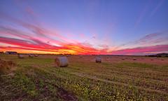 A LITTLE LATER,  WYREEMA SUNSET 19/10/2016 (16th man) Tags: wyreema toowoomba qld queensland australia sunset hay bale haybales farm canon eos eos5dmkiii