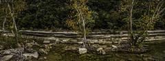 Escarpment (keith_shuley) Tags: stream water bullcreek clear austin texas landscape