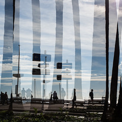 One place, different times #13. (franleru1) Tags: 1x1 abstract arbre art cannes effets france mer nature ombre photoderue plage streetphotography artbyphoto conceptual lines shadow silhouette sky tree