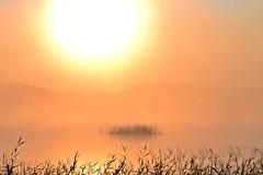 A misty sunrise at Lake Pieni-Kupsunen (Kuhmo, 20130713, 4:20 am) (RainoL) Tags: 2013 201307 20130713 finland fog july kainuu kn krvpud kuhmo lake mist morning pienikupsunen reflection summer sunrise